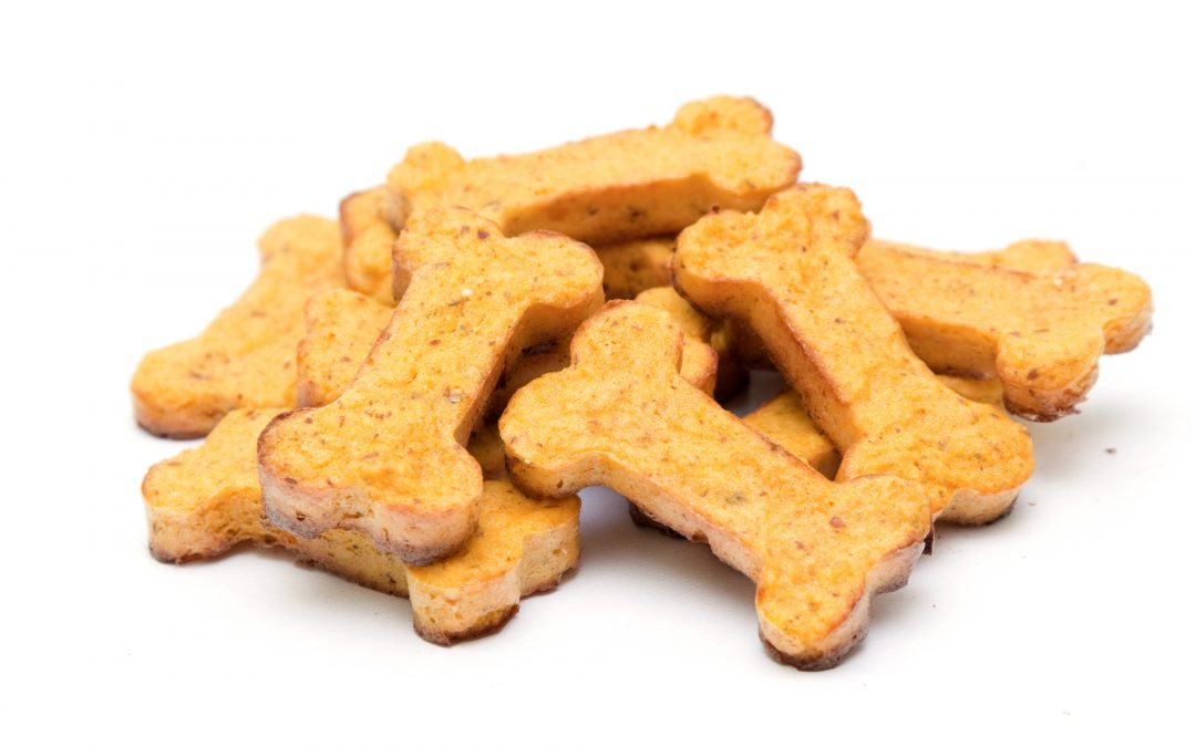 4 Best Homemade Dog Treats for the Holidays