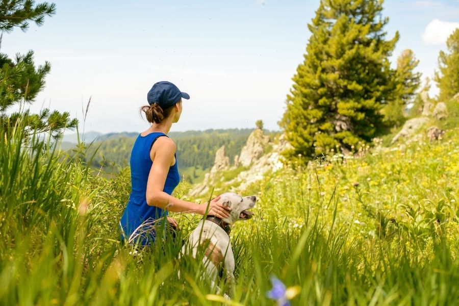 Why You Should Hire a Frisco Dog Walker