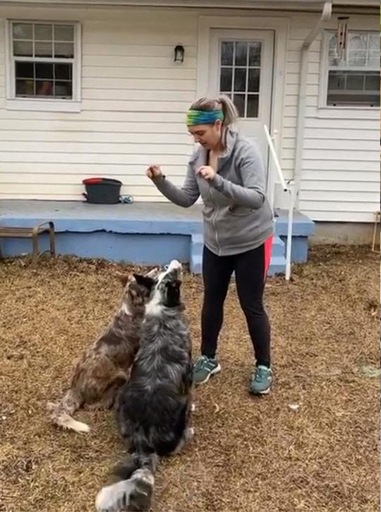 Emily Dog Trainer Dallas